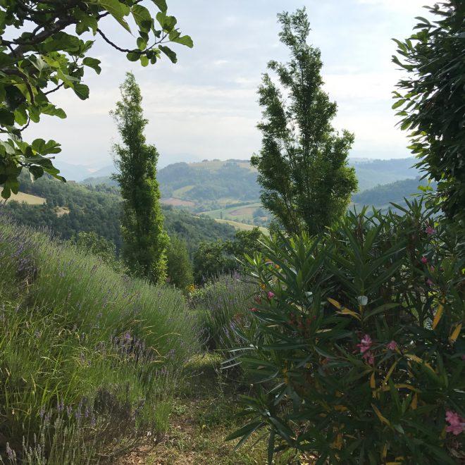 San Fiorano Aussicht 1